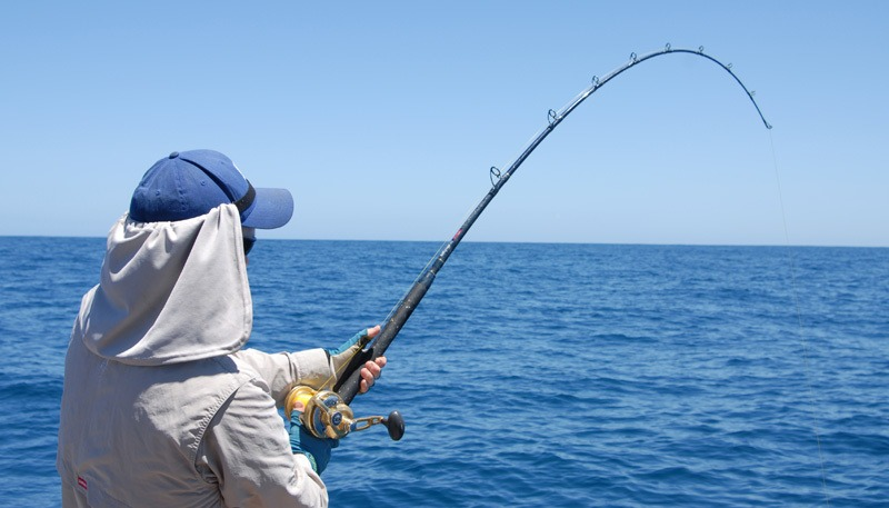 best shark fishing rods
