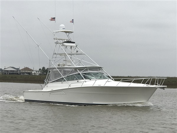 Shark Fishing Charters